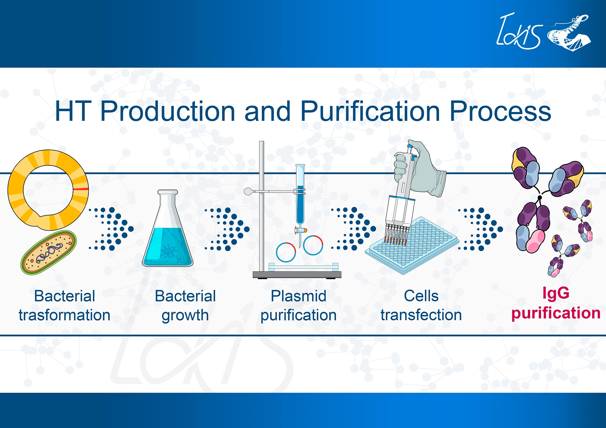 HT Production and Purification Process